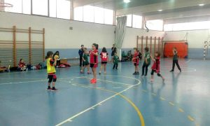Tizón Sport-BM Viana – BM Laguna Benjamín C