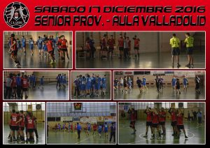 BM Laguna Senior Prov. – Aula Valladolid